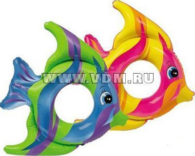 http://shop.vdm.ru/products_pictures/b47773.jpg